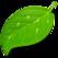 Coda 2 Icon