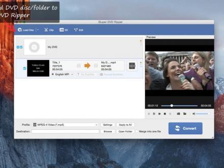 Screenshot von Free DVD Ripper