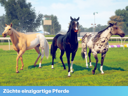 Screenshot von Rival Stars Horse Racing